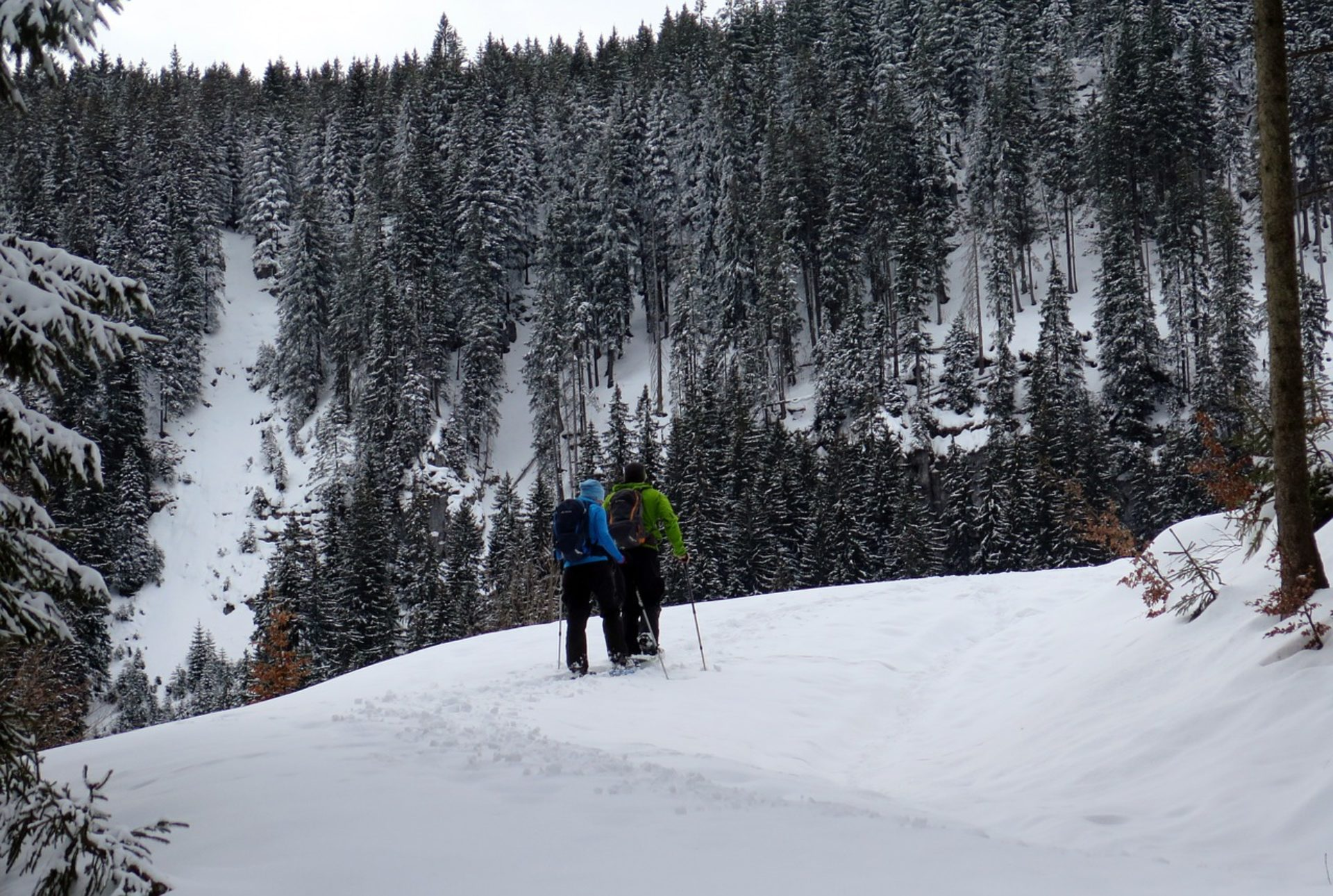 Ciaspolate Val di Rhêmes