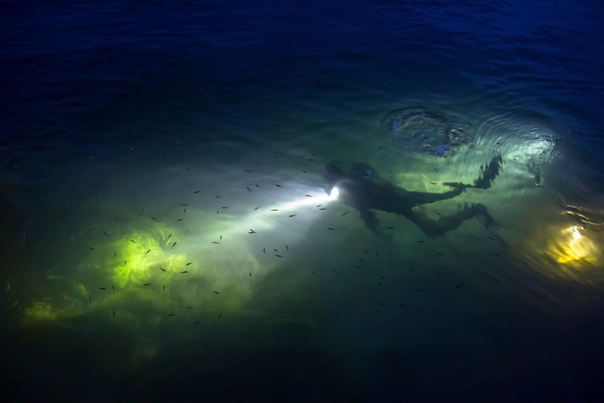 Immersioni subacquee Catania