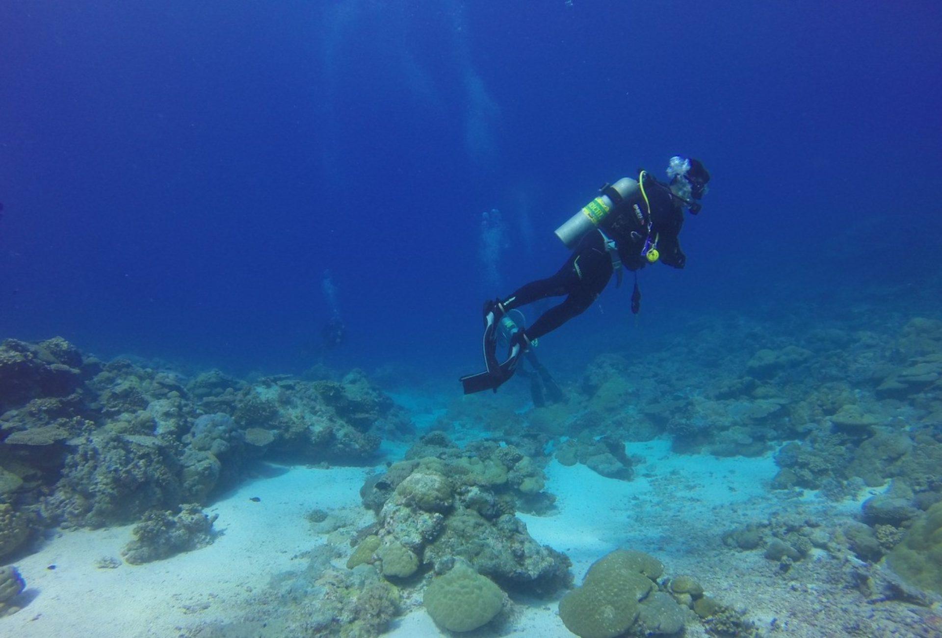 Immersioni subacquee Sardegna