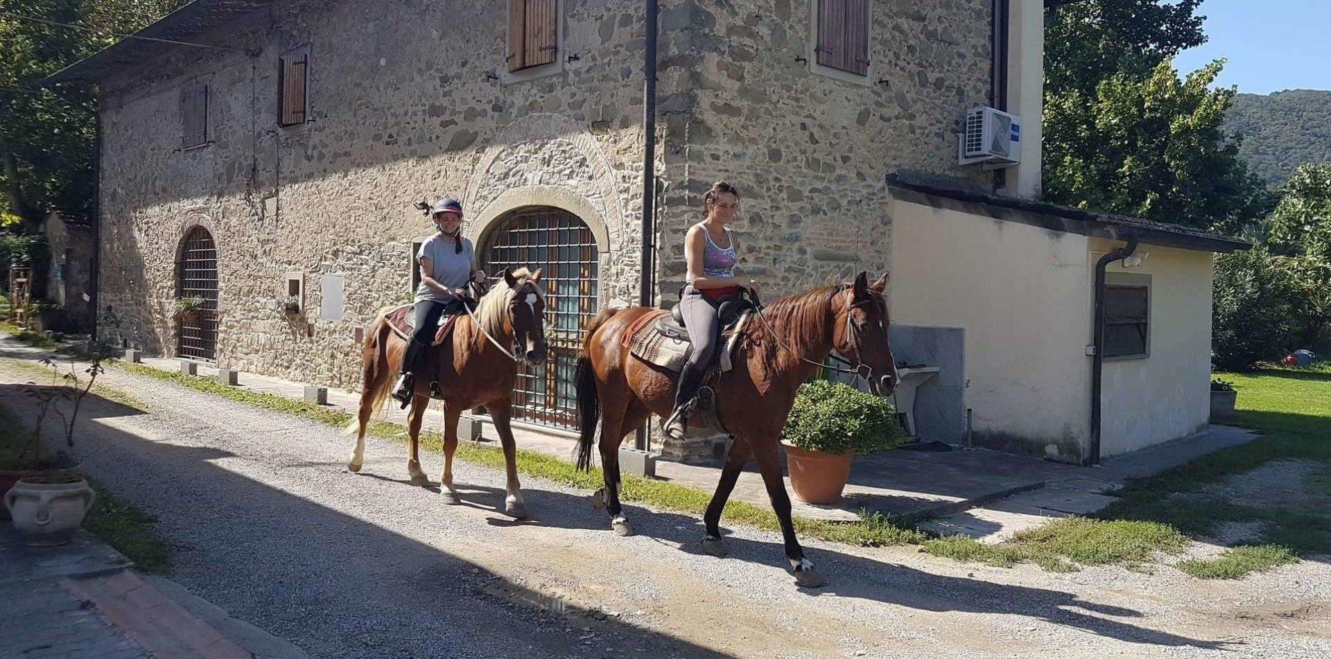 Passeggiate a cavallo Firenze