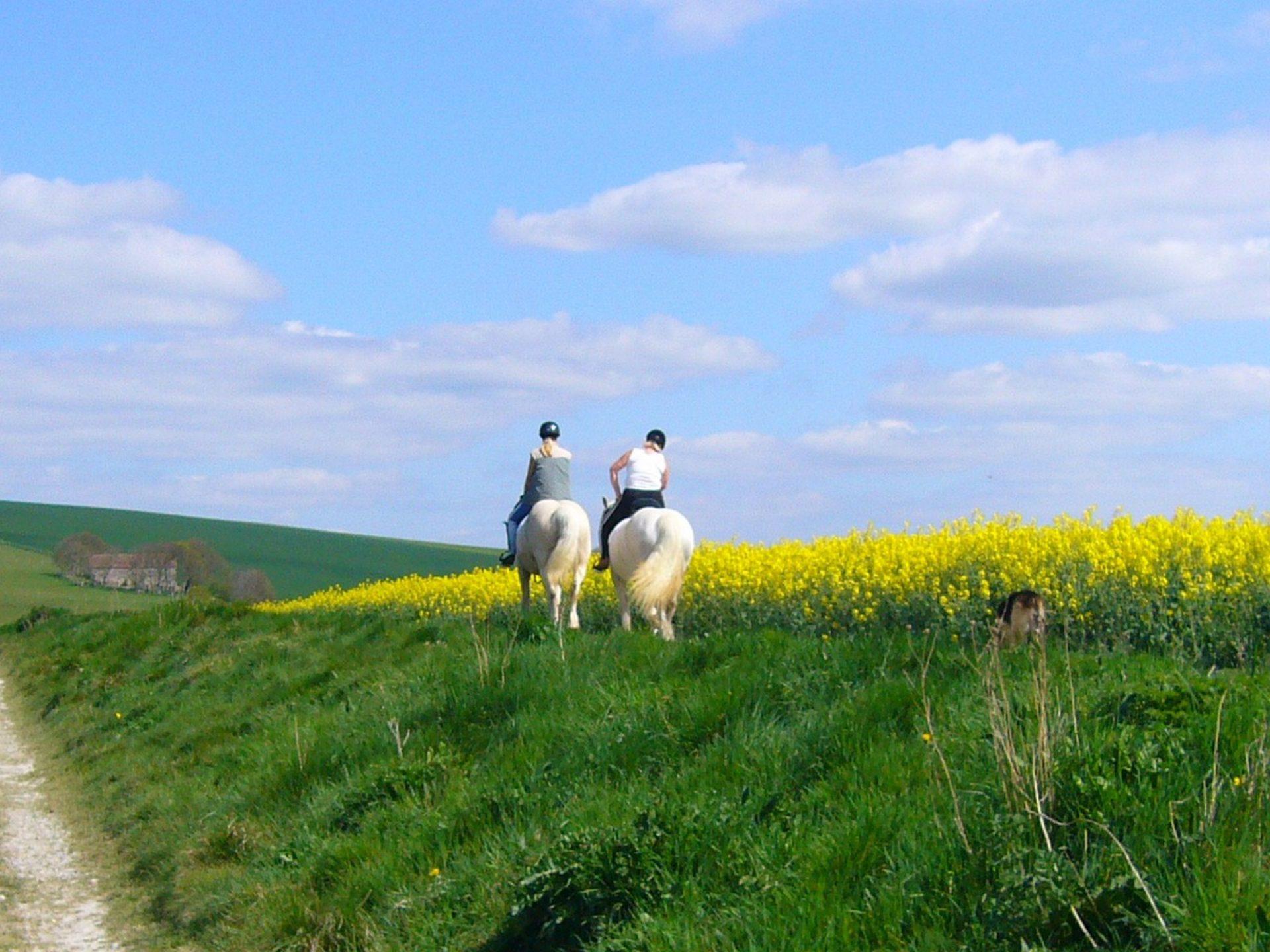 Passeggiate a cavallo Foligno