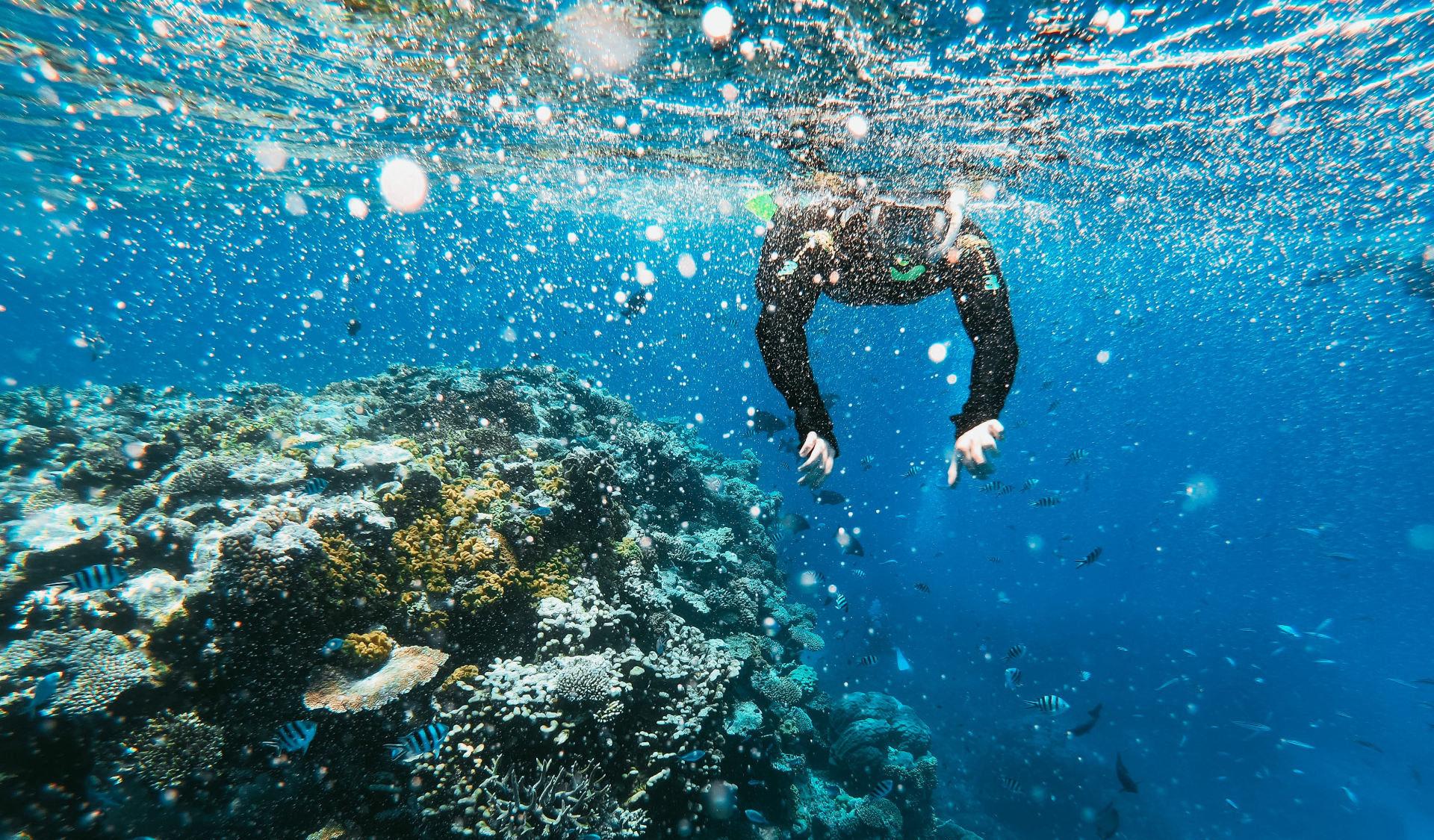 Snorkeling Catania