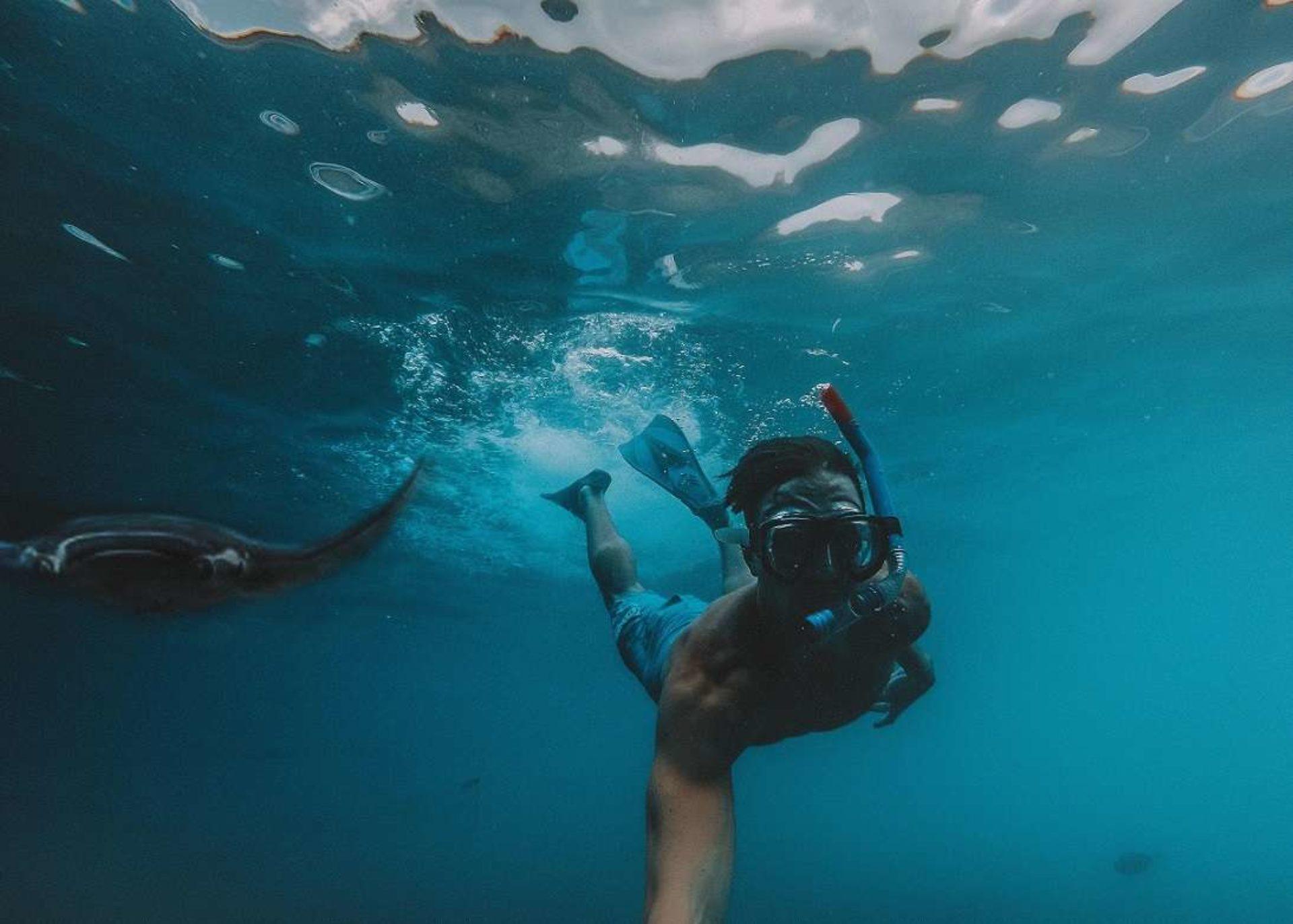 Snorkeling Ischia