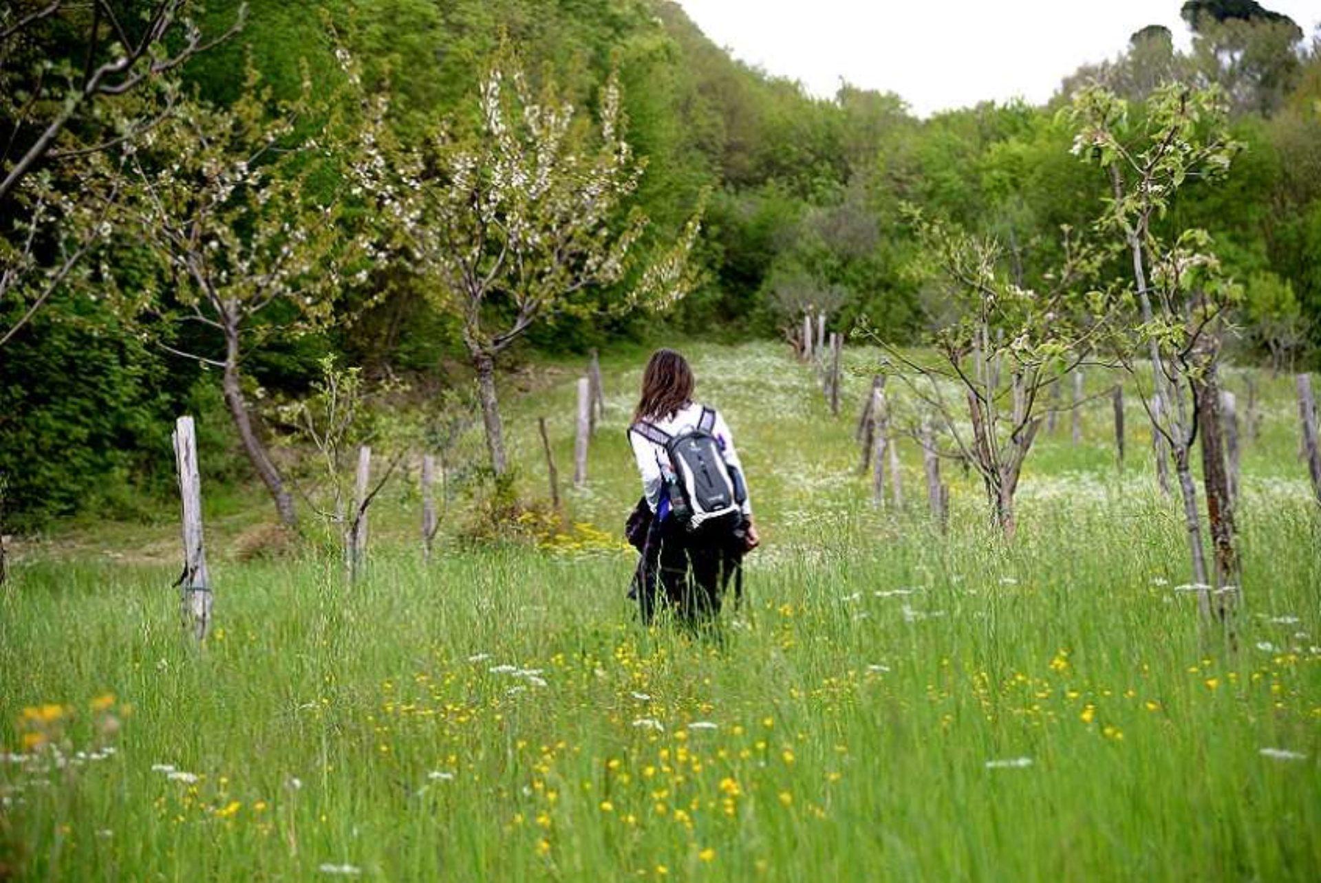 Trekking Mugello