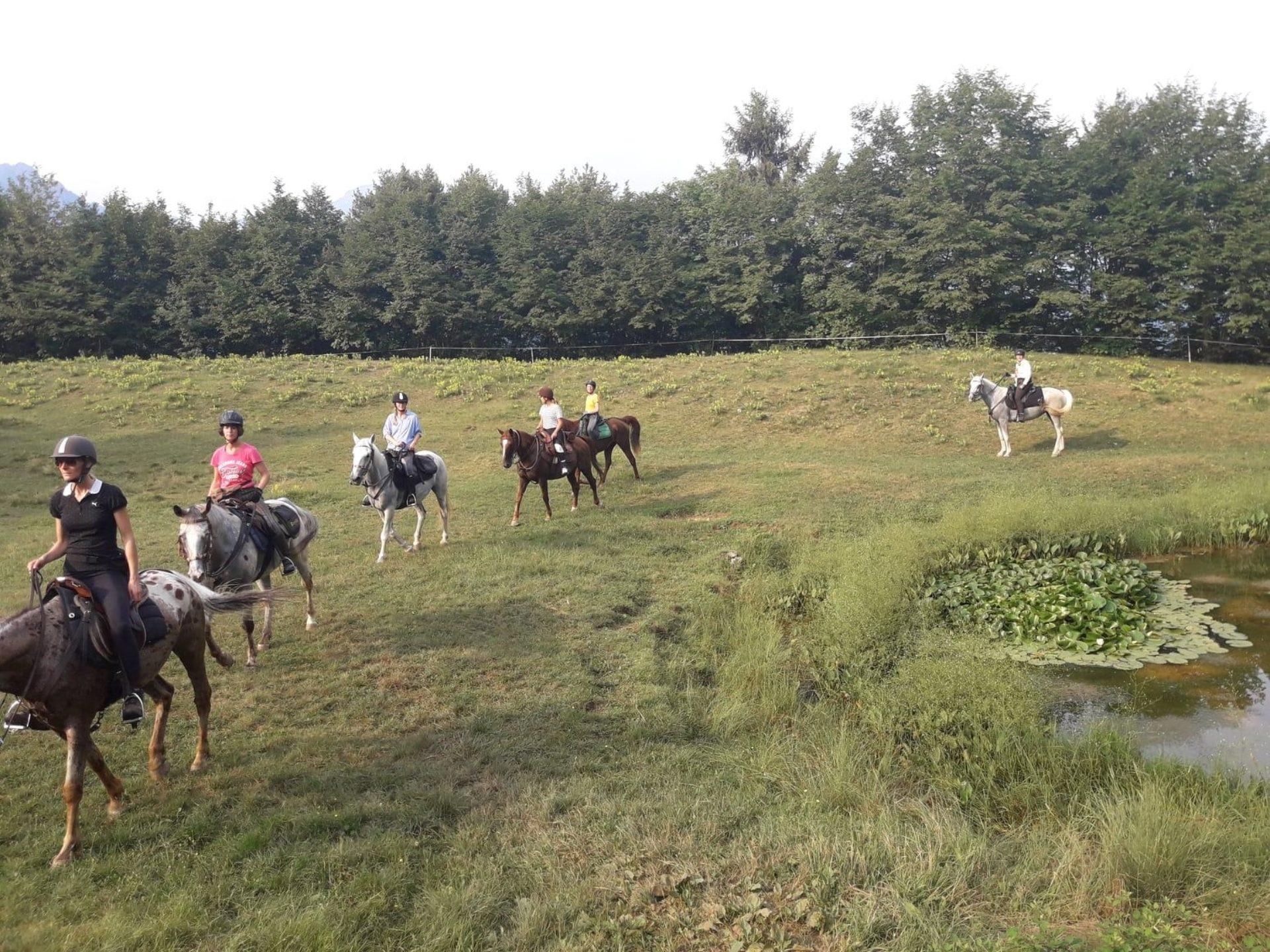 Passeggiate a cavallo Brescia